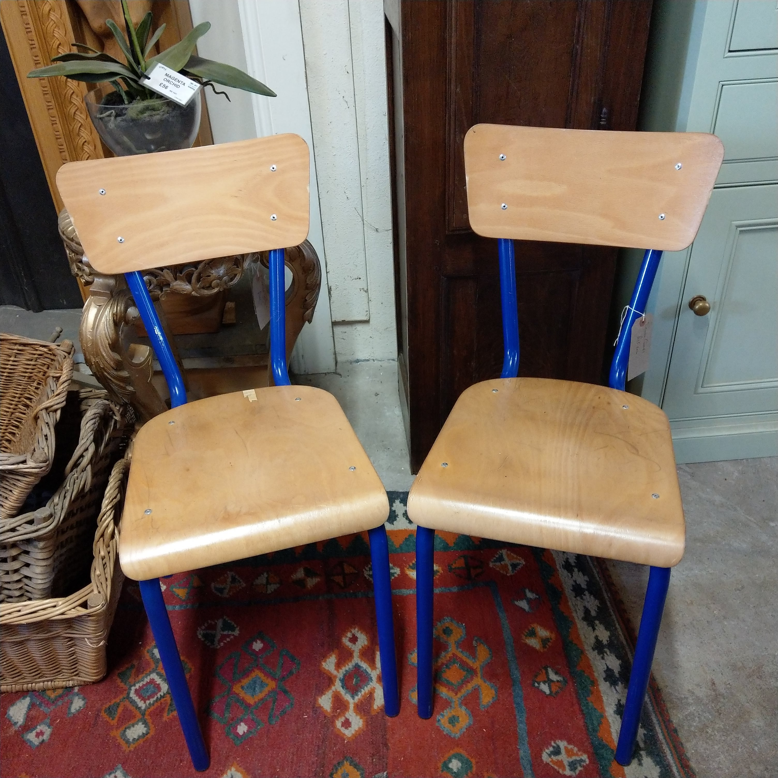 Blue french school chairs